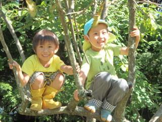 子どもの野外保育の未来について、研究フォーラムを開催したい!