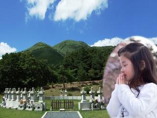 阿蘇のふもとに、安心・低価格の「樹林墓地」をつくりたい