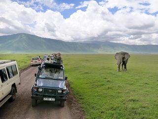 観光大国・タンザニアの魅力を伝えるWebサイトを作成したい!!