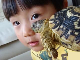 子どもを笑顔にする入場無料の「ふれあい水族館」を存続したい!