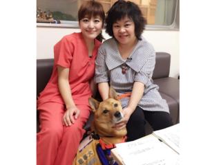 鹿児島で補助犬普及のためのイベントと講演会を開催したい!