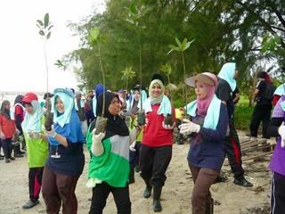 マレーシアのマングローブ林にある遊歩道を早急に修復したい!