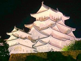 認知症啓発のために、姫路城をライトアップしたい!