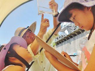 鎌倉の海、大丈夫?貴重な生き物を守るためにガイドブックを作成