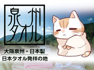 猫のキャラクターの力で大阪泉州タオルを国内外にPRしたい!