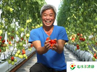 「加熱用トマト」の美味しさ・食文化を日本で伝えていきたい!
