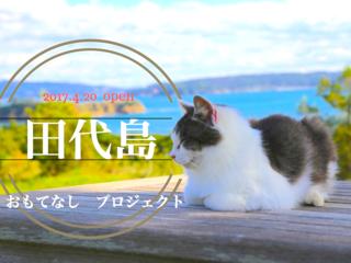 """""""猫の島""""田代島に観光客の憩いの場となるレストランを創ります!"""
