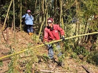 千葉県の竹林を整備して大人から子供達が楽しめる村を作りたい!