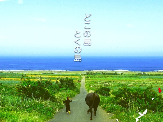 どこの島とくの島。世界自然遺産登録に備え、活動拠点を創りたい