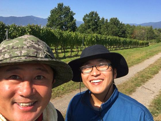 ワイン用ぶどうの栽培と醸造を通じて地域を元気にしたい!