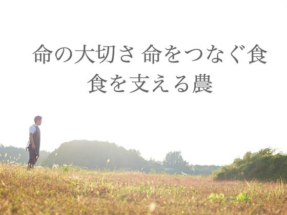 渡り鳥と蓮の聖地 宮城県伊豆沼に食農体験ファームを創りたい!!