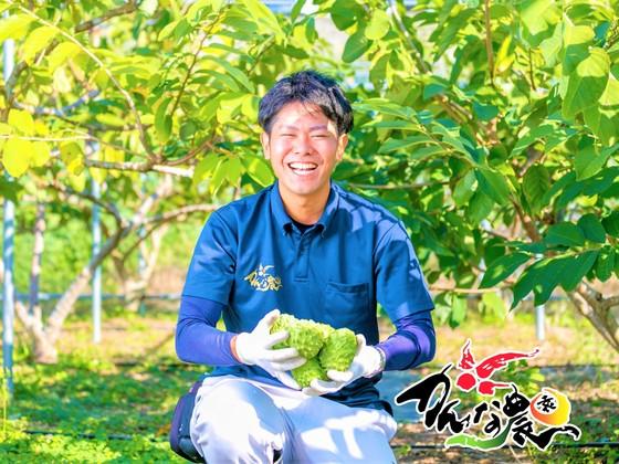 最大糖度26度!未知なる沖縄の高級フルーツ「アテモヤ」を全国へ
