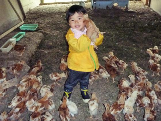 稚内から!宗谷の鮭と利尻昆布を食べた鶏の卵を全国へ届けたい!