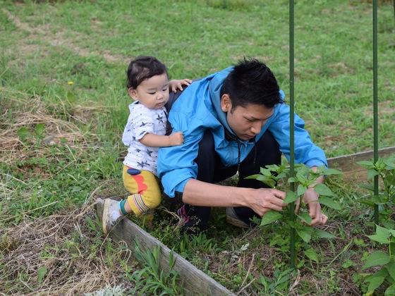 自然の中で農作業!子どもたちの食育を行う団体を立ち上げたい