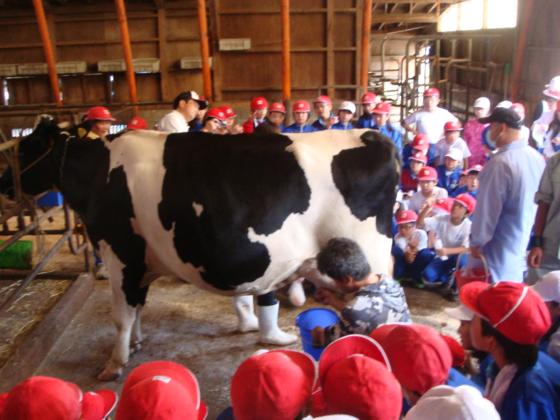 山形発!酪農体験教室から導き出した命の重さを伝える本を配布!