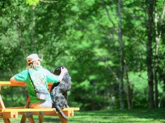 ドッグトレーニングで愛犬とのより良い関係作りをサポートしたい