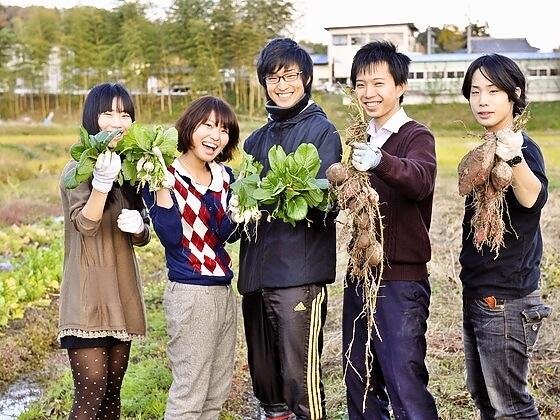 学生が農業でアルバイトをする為無人販売ボックスを増設したい!