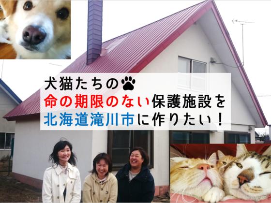 犬猫たちの命の期限のない保護施設を北海道滝川市に作りたい!