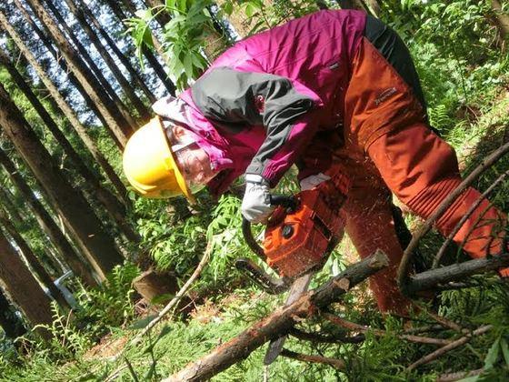 全国林業地密着取材ー森の仕事リクルート情報サイトの作成!