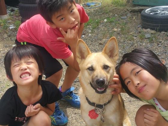 命の大切さ伝える保護犬写真集を作って学校や図書館にとどけたい
