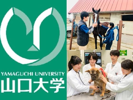 山口大獣医学部の挑戦!動物の生体を使わない獣医師教育の実現へ