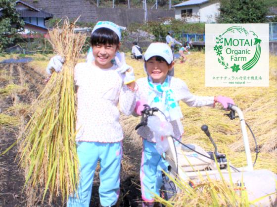 岐阜県母袋の美しい風景を守りたい!里山再生プロジェクト!