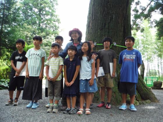 樹齢400年のご神木が危ない!阿蘇のご神木を守るプロジェクト