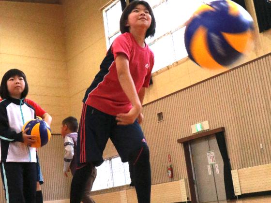 青森市で小学生バレーチームを立ち上げ、試合に出場したい!