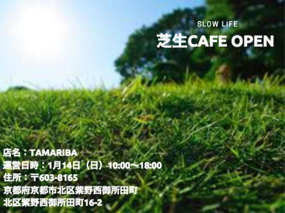 スローライフな商店街への第一歩!学生が芝生カフェをオープン!