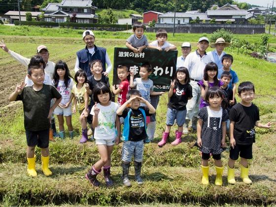 田んぼに咲かせる、ひまわり畑!全250世帯しかない地域の挑戦!