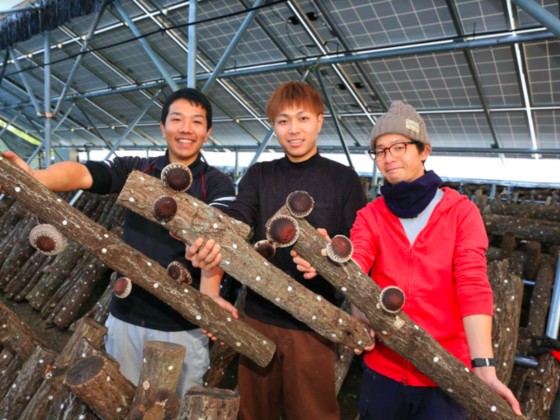 みんなで地域おこし!岡山で里山再生×原木椎茸栽培プロジェクト
