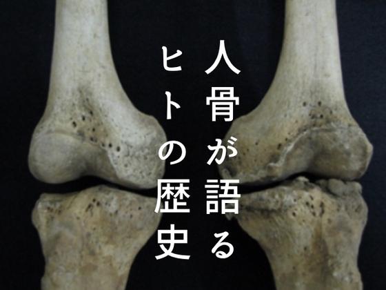 """縄文人も虫歯に苦しんだ?骨と病で紐解く、3万年の""""日本社会""""史"""