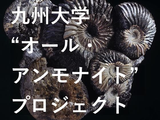 誕生から絶滅まで。3億4000万年分のアンモナイト化石 九大に集結