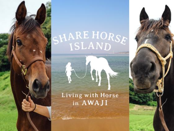 くらしに馬を 保護した馬達の居場所と仕事を淡路島の里山に創る