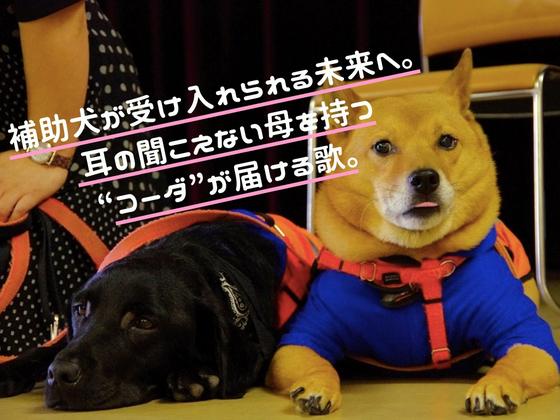 「ほじょ犬って知ってる?」 歌と手話で多くの人に伝えたい。