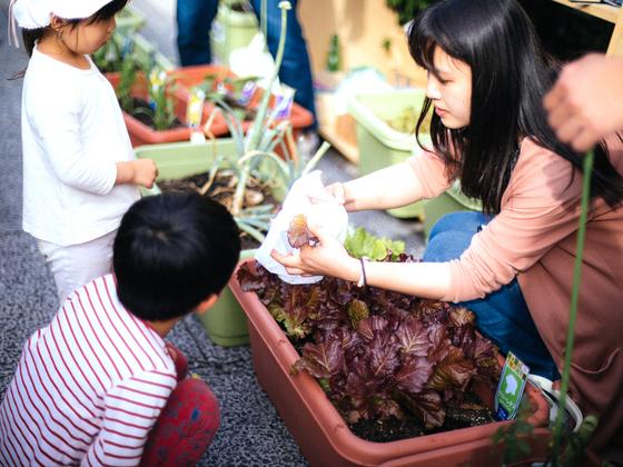 街角で野菜を育て、根津のまちをもっと豊かに!