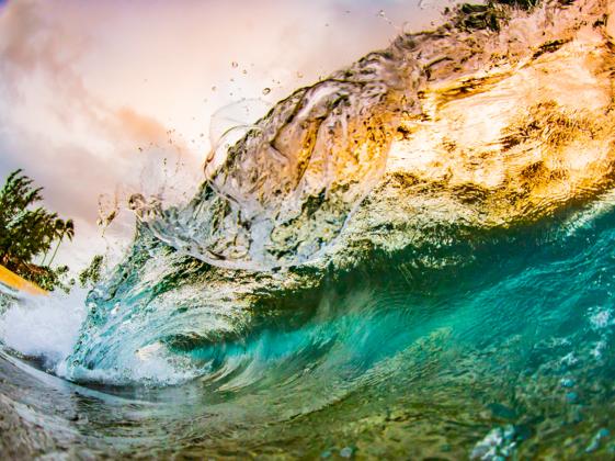 ハワイの海を後世に残すため、カメラマンの僕が今できることを