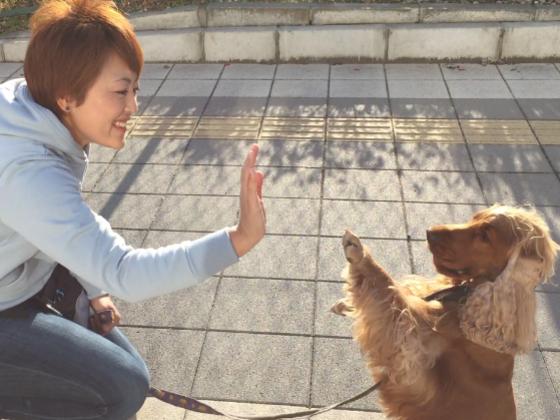 愛犬と学んだ、ほめて教えるドッグトレーニングを広めたい!