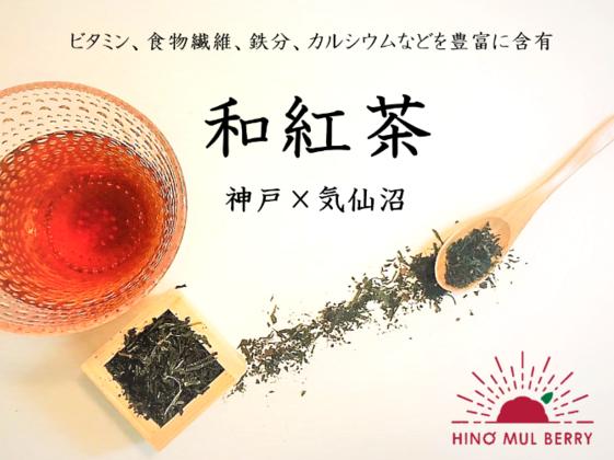 【気仙沼と共に歩む】桑の和紅茶で健康に!毎日飲める優しい風味