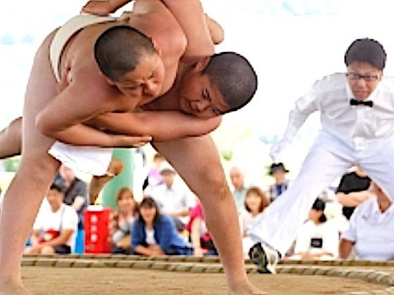 第43回江戸川区わんぱく相撲を、地域で作り上げる大会にしたい!