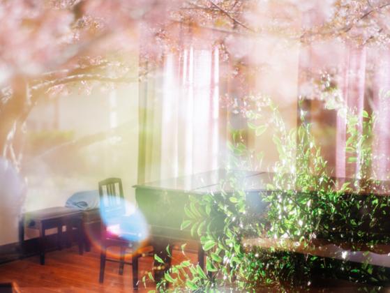 水害で断念したCD制作を母校の日本最古のピアノで実現したい!