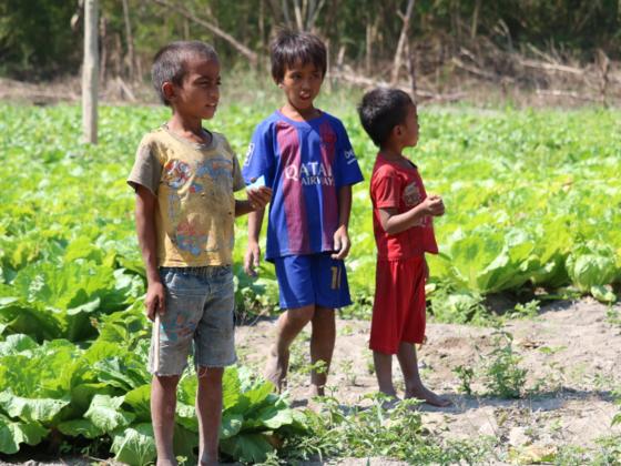 インドネシアの子どもたちに、モリンガで栄養改善を