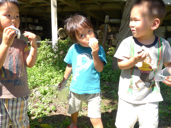 休耕田を復活させて自然栽培したお米を保育園の給食に!