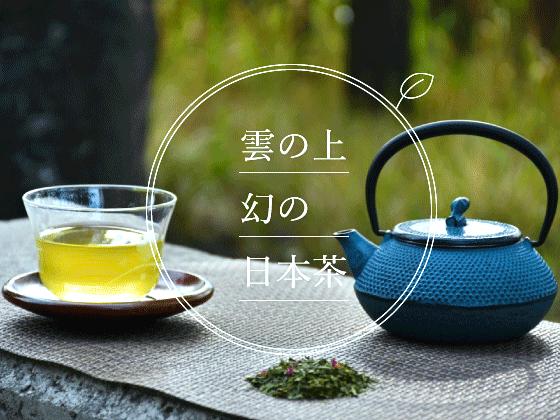 雲上で栽培される幻のお茶!ホンモノの日本茶を世界へ届けたい
