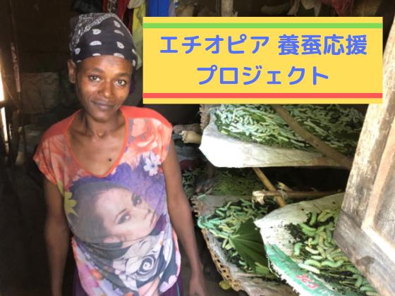エチオピア養蚕業発展の第一歩!農家さんに養蚕冊子を届けたい