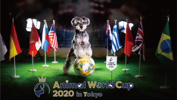 殺処分と飼育放棄にNOを。動物が主役のスポーツの祭典、開催!