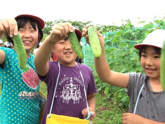 在来野菜を「食べて守る」ムーブメントを広げ、地域の魅力を守る