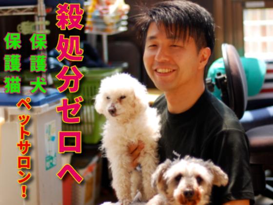 殺処分される犬・猫たちと優しい里親さんを繋ぐペットサロン