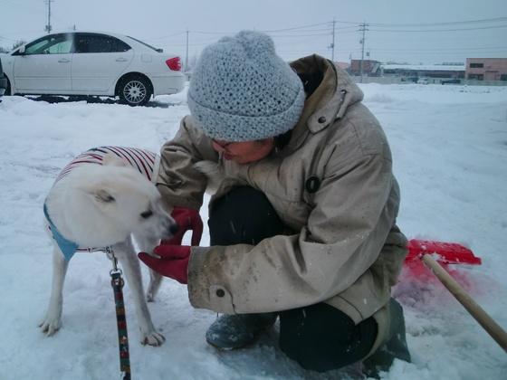福島で家族を失った犬をセラピードッグに育て人を救う新たな道を
