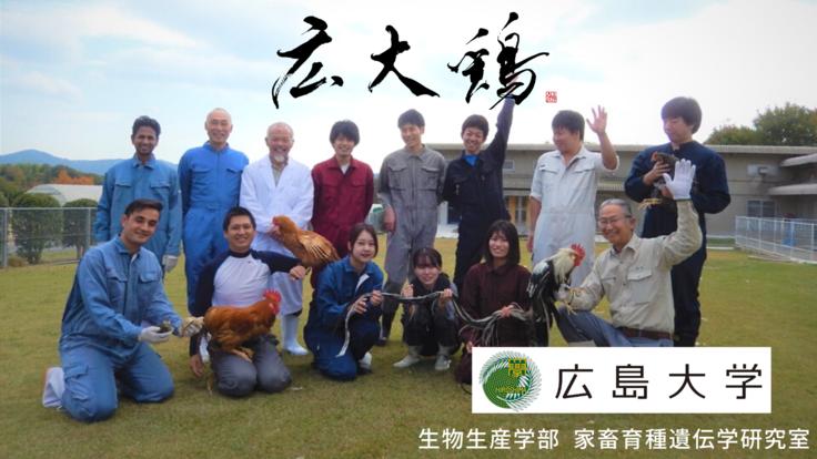 日本初!広島大学と地域の特色をいかした地鶏プロジェクト